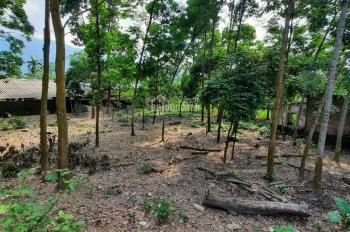Chính chủ cần bán 2200m2 đất bìa đỏ làm nhà vườn nghỉ dưỡng giá 2 tỷ; LH 0867007589
