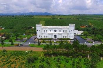 Đất sổ hồng Lâm Đồng đầu tư đón đầu cao tốc, mua nghỉ dưỡng