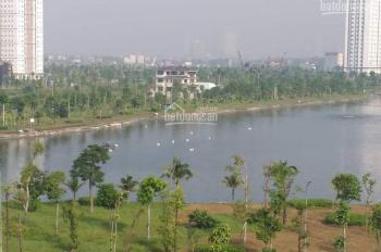 Chính chủ cần bán đất liền kề B2.1 LK 4 đường 17m Thanh Hà Cienco 5 giá đầu tư