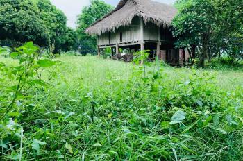 Bán nhanh lô đất thổ cư diện tích 9000m2 tại Hòa Sơn, Lương Sơn, Hòa Bình