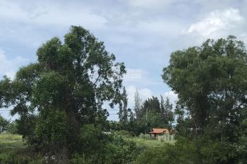 Đất View Biển Hồ Tràm, Hồ cốc, sổ riêng, đất dân LH: 0979168604 Điền (Hồ Tràm).