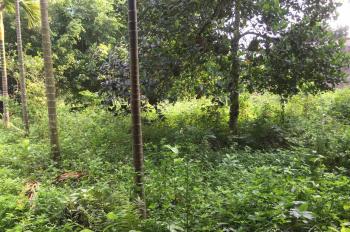 Khuôn viên đầy đủ giá rẻ tại Lương Sơn, gần sân Golf Phượng Hoàng
