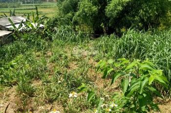Bán lô đất nghỉ dưỡng 3 mặt tiền view cánh đồng mặt nhìn lên núi Ba Vì