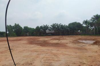 Đất rẻ thúi ngay TTHC Bàu Bàng, gần KCN, DT 750m2, giá 390tr, MTĐ 8m, SHR, liên hệ 0898466306