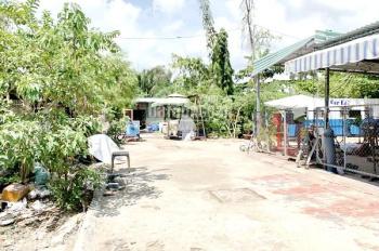 Cho thuê 2.500m2 đất gần sát chợ Phú Thuận quận 7