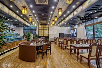 Cho thuê 3400m2 trung tâm Vũng Tàu kinh doanh ẩm thực, nhà hàng, khách sạn, trung tâm hội nghị