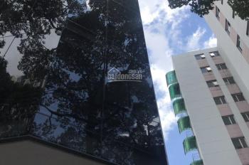 Cho thuê nhà MT Nguyễn Công Trứ, P. NTB, Q. 1: 4x17m, hầm 8 tầng, 120Tr/Th