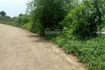Tài chính 500tr sở hữu ngay 430m2 đất nghỉ dưỡng Vân Hòa, Ba Vì, view cánh đồng xanh mát 0983100636
