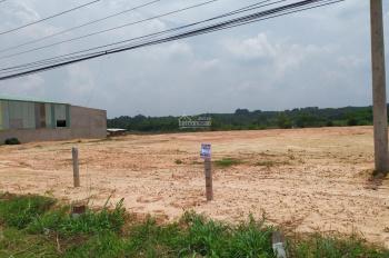 Bán gấp lô đất liền kề KCN Bàu Bàng, DT 1005m2, giá 539tr, SHR, MTĐ 8m, LK TTHC, gần chợ Bàu Bàng