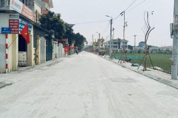 Chính chủ bán đất đấu giá Đại Đồng - Thạch Thất - Hà Nội