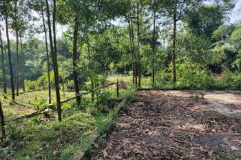Nhượng 3026m2 đất trang trại nhà vườn, gần hồ đồng chanh Lương Sơn, Hoà Bình