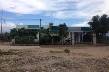 Bán lô đất đẹp làng chùa Đại Ninh, Phú An, Phú Hội, Đức Trọng, Lâm Đồng