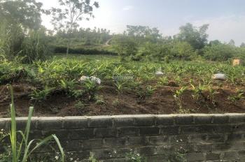 Bán đất 8000m2 đất làm trang trại, nhà xưởng Hòa Sơn, Lương Sơn - Hoà Bình