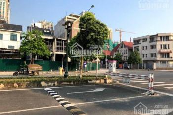 Bán biệt thự vip khu A Dương Nội, đường 40 m