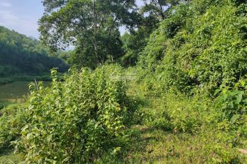 Cần bán 4800m2 đất ven hồ Đồng Chanh thổ cư 400m2 tại Nhuận Trạch, Lương Sơn, Hòa Bình