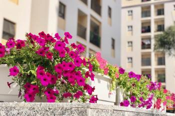 Cần tiền bán gấp căn hộ 2PN, view hồ bơi, sổ hồng sở hữu lâu dài giá 3,4 tỷ, LH: 0903310213