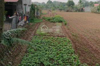 Chính chủ bán lô đất vườn ngoại thành Hà Nội, cách cầu Phùng 1km