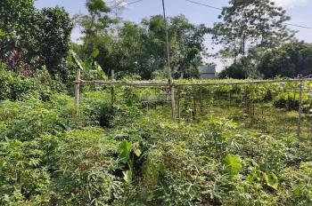 Nhượng 2468m2 đất trang trại nhà vườn giá cả hợp lý tại Nhuận Trạch, Lương Sơn, Hòa Bình