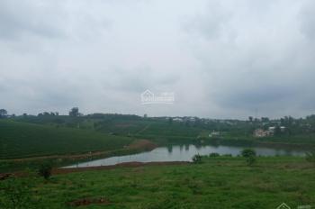 Bán lô đất hẻm đường Khúc Thừa Dụ, xã Đambri, Bảo Lộc - Diện tích: 4300m2
