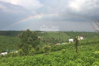 Bán đất lô đường Tản Đà - Đambri - Bảo Lộc Diện tích: 3400m2