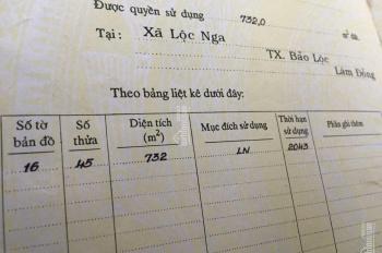 Bán đất mặt tiền Trần Quang Khải ngay trường lái ô tô Bá Thiên, Bảo Lộc. 0937508298