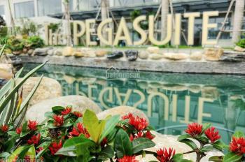 Kẹt tiền bán căn hộ The Pegasuite, quận 8, hướng Đông Nam giá 2,4 tỷ vào ở luôn. LH: 0901.555.938