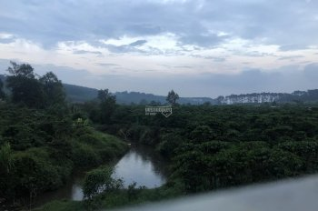 Đất nghỉ dưỡng view hồ thích hợp làm trang trại, Farmstay tại Bảo Lộc, Lâm Đồng