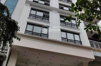 Hot! Mặt phố Nguyễn Khánh Toàn, cao tầng, thang máy, mặt tiền đẹp, vỉa hè rộng, kinh doanh đỉnh