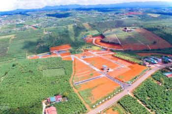 Siêu phẩm biệt thự vườn chỉ từ 5tr/m2 dt 250m2 Mặt tiền Lý Thường Kiệt, P.Lộc Phát, TP Bảo Lộc.