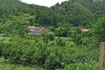 Bán 6248m2 đất nghỉ dưỡng Yên Bài - Ba Vì. Cảnh đẹp, suối chảy quanh đất, chỉ 1tr/1m2 0983100636