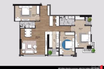 Cần bán căn hộ chung cư Mỹ Đình Iris Garden 3 phòng ngủ, 2 vệ sinh, diện tich 132,9m2 giá từ 3.9 tỷ