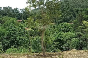 Cần bán DT hơn 6000 m2 đất tại Ba Vì, Hà Nội, thế đất cao thoáng xung quanh là suối tự nhiên chảy