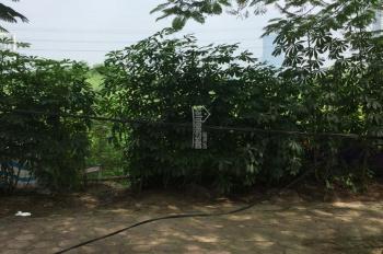 Bán đất thổ xóm Ngò, An Thượng, Hoài Đức, DT 273m2 sổ thực tế 310m2 phân được 6 lô