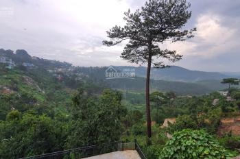 Bán homestay view rừng thông, núi đồi tuyệt đẹp mặt tiền đường Hoàng Hoa Thám