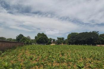 3600m2 đất Lương Sơn làm nhà vườn nghỉ dưỡng