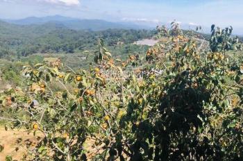 Chính chủ cần bán 1000m2 đất nông nghiệp ngoại ô TP Đà Lạt