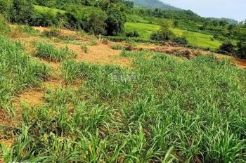 Bán đất nghỉ dưỡng ở thôn Chóng xã Yên Bài huyện Ba Vì Hà Nội