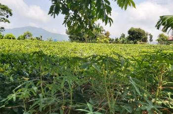 Bán đất ở xã Yên Bài huyện Ba Vì Hà Nội