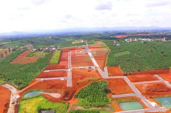 Chủ đất cần bán gấp lô đất Bảo Lộc - 200m2 giá 5tr/m2 sổ hồng riêng công chứng ngay.