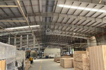 Cho thuê nhà xưởng Bến Cát, Bình Dương, Diện tích: 11.000 m2