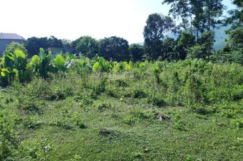 Bán đất chính chủ 3300m2 Lương Sơn HB đường ô tô vào thoải mái, có cây ăn quả, phẳng lỳ