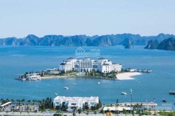 Bán ô đất vị trí siêu hót, tầm nhìn đầu tư chiến lược đón cầu Vịnh Cửa Lục