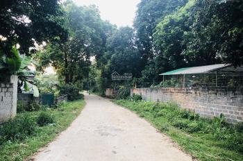 Bán gấp 5500m2 đất thổ cư phù hợp nghỉ dưỡng homestay tại Lương Sơn, Hoà Bình
