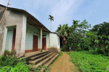 Cần bán 2600m2 có nhà cấp 4 khuôn viên gọn gàng làm nhà vườn tại Lương Sơn, Hòa Bình