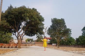 Bán đất sổ đỏ rẻ nhất Hòa Lạc 570tr - 0977999008