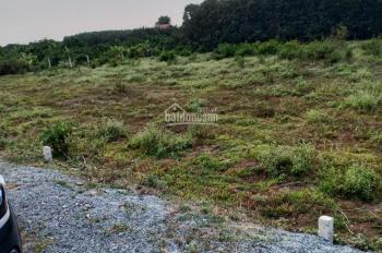 Đánh bài vỡ nợ, bán gấp lô đất ngay sát KCN Phước Đông, 5x22m, giá chỉ 380tr. Lời ngay khi mua