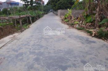 Bán đất thổ cư Đặng Cương, An Dương, Hải Phòng