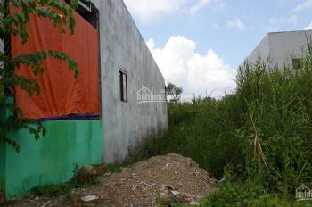 Bán đất khu dân cư Nguyễn Bình 2ha, đối diện trường tiểu học Lê Lợi
