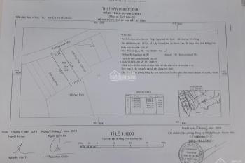 Bán đất sổ hồng trung tâm thị trấn Phước Bửu, Xuyên Mộc, Bà Rịa Vũng Tàu