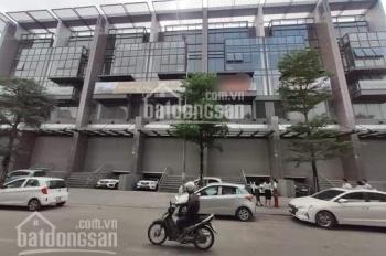Hàng hiếm shophouse mặt phố Hào Nam xây - Đống Đa diện tích 146m2 xây 7 tầng